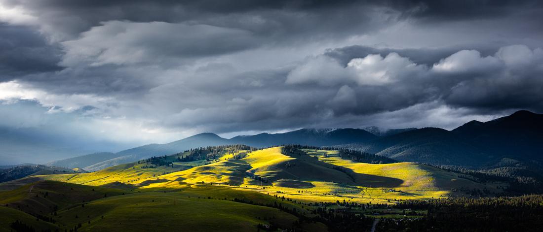 North Hills Spring | MSLA3